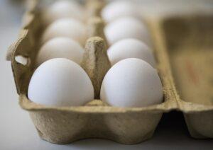 Capalbio, uova contaminate al fipronil: tre sequestri