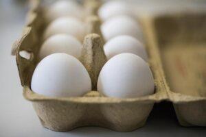 Uova contaminate, ministero della Salute richiama questi lotti delle Marche