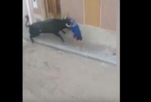Spagna, prova a rifugiarsi in un portone: toro lo insegue e lo colpisce a morte