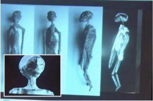 Mummie-aliene-Perù