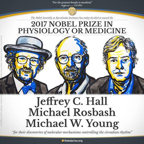 Nobel Medicina 2017 a Hall, Rosbash e Young: svelato meccanismo molecolare dell'orologio biologico