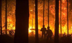 ophelia-incendi