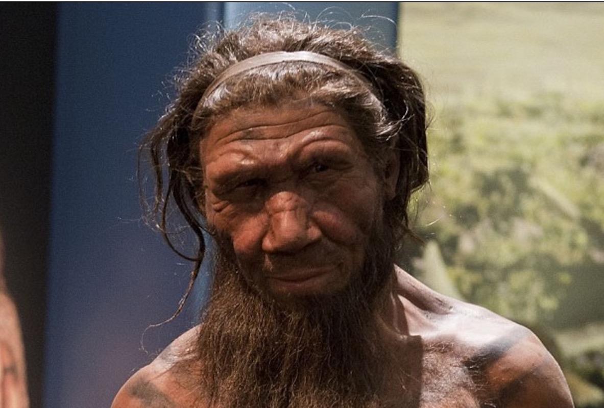 Neanderthals-umani-evoluzione-nasi