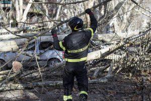 Cadono-alberi-roma