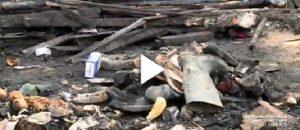 Tendopoli Reggio Calabria: troupe La7 aggredita a colpi di martello