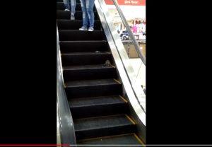 Topo sulle scale mobili del centro commerciale salta sui piedi dei clienti