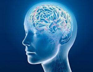 Cervello umano sopravvive 5 minuti dopo la morte