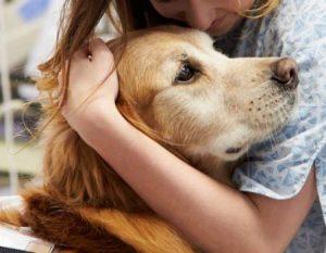 Cani, gatti e conigli possono essere usati nella pet therapy