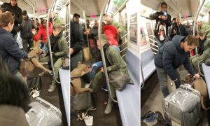 New York, pitbull azzanna donna in metropolitana: il VIDEO inquietante