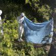 Roma, corpo di donna carbonizzato nel Parco delle Tre Fontane03