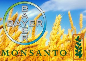 Bayer compra (63 mld $) e cancella il marchio Monsanto