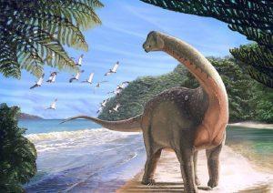 Dinosauro Bruno in Friuli ritrova la testa: ora lo scheletro è completo