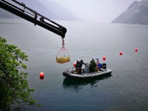 Lago di Garda, interrotte ricerche del turista lituano disperso