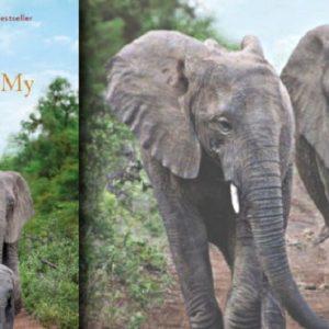 """""""An Elephant In My Kitchen"""", il libro di Françoise Malby-Anthony: """"Quando mio marito è morto gli elefanti..."""""""