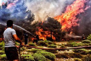 Incendi in Grecia, più di 70 i morti accertati, 16 bambini feriti gravi10