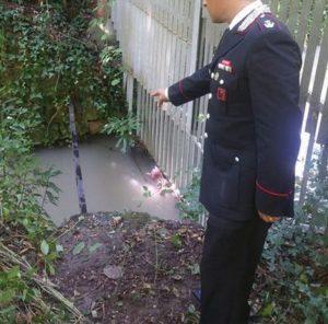 Ronchi (Verona), trovato cadavere in un corso d'acqua. E' del ragazzo olandese scomparso giovedì (foto Ansa)