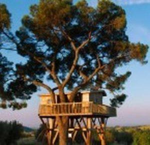 Roma, Villa Ada, la casa sull'albero... non è di un bambino