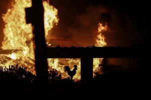 Grecia: hanno appiccato gli incendi
