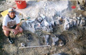Dinosauro, scoperta impronta da record di 150 milioni di anni fa