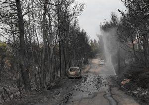 """Incendi in Grecia, pista dolosa. Testimone: """"Impossibile siano divampati tutti insieme per una casualità"""""""