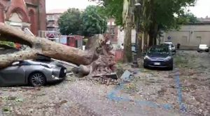 Maltempo Lombardia e Piemonte: nubifragi, alberi caduti, paura per bambini e pazienti