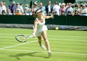 """Wimbledon invasa dalle formiche volanti: sono i giorni dei """"voli nuziali"""""""