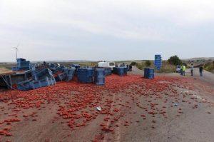 Foggia, scontro Tir-furgone. Avevano appena finito di lavorare nei campi i quattro braccianti morti (foto Ansa)
