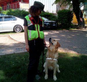 """Buddy, cane da soccorso degli alpini, avvelenato nel bosco """"da chi forse un giorno avrà bisogno di lui"""""""