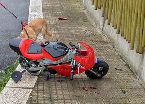 Martina Franca (Taranto), incidente in minimoto: muore bambino di 9 anni