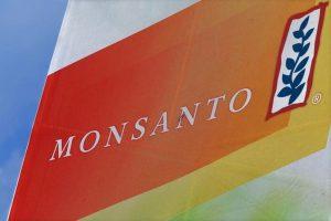 Monsanto condannata risarcimento milioni di dollari a malato cancro