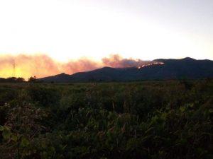 Incendio sul monte Serra, tornano le fiamme a Lugnano, vicino a Vicopisano