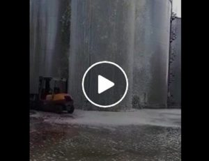 Conegliano Veneto, esplode silos: 30 mila litri di Prosecco buttati