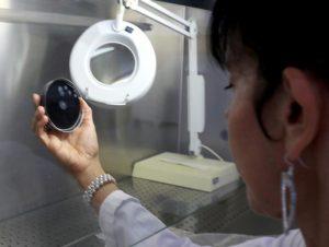 Legionella trovata in acciaieria Ast Terni in una fontanella