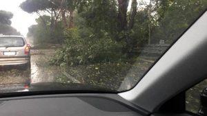 Maltempo, allerta rossa per Veneto e Friuli: frane e strade chiuse. A Roma cadono rami e tegole02