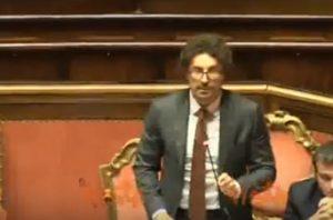 Toninelli al Senato