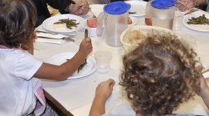 Mense scolastiche italiane, rubano sul cibo sulla pelle dei bambini: 30% irregolari