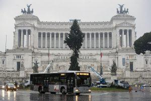 """Roma, arriva il nuovo """"Spelacchio"""": l'albero ha qualche ramo spezzato 9"""