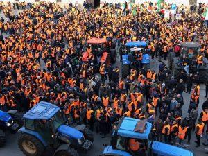 Gillet arancioni, 3mila agricoltori 2
