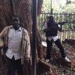 Kenya, attentato in hotel di lusso a Nairobi: 3 morti. Commando al Shabaab asserragliato con ostaggi 03