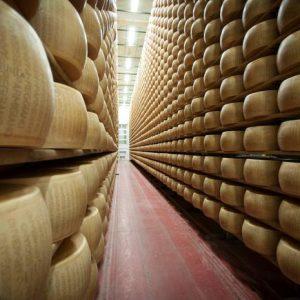 Parmigiano reggiano e Grana padano, tutte le differenze: origine, stagionatura...