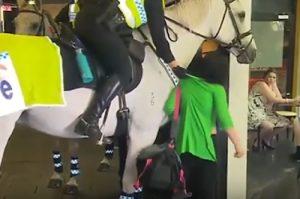 Australia pugno cavallo polizia