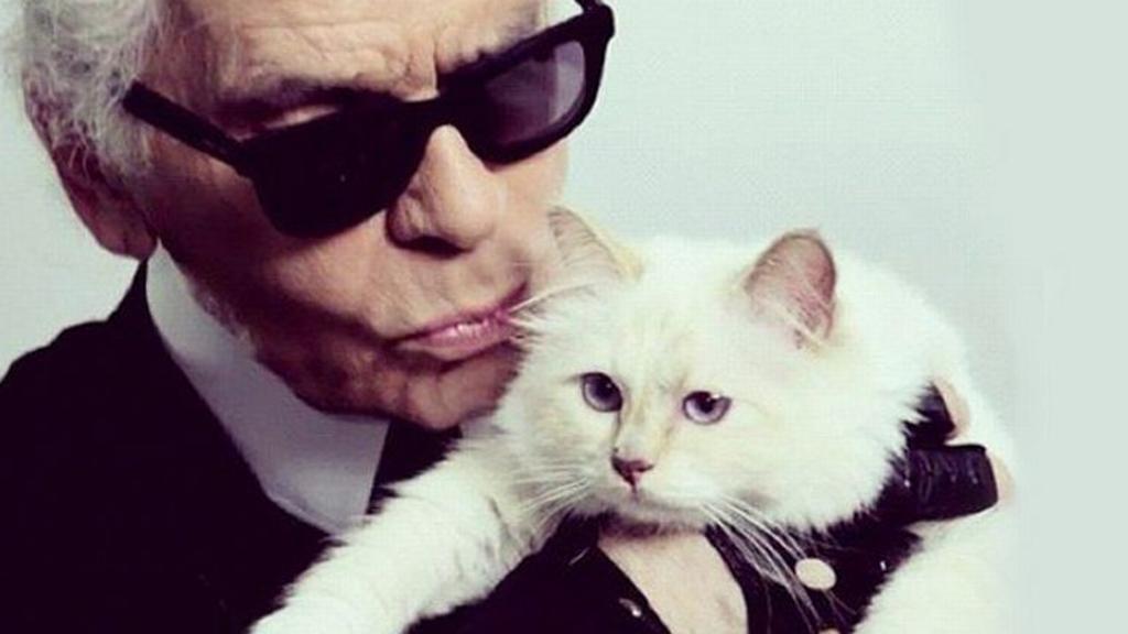 Karl Lagerfeld Morto Eredità Va Alla Gatta Choupette