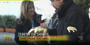 Tapiro Teresa De Santis