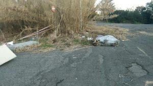 Tor di Valle, area sotto sequestro per rifiuti sparsi123