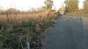 Tor di Valle, area sotto sequestro per rifiuti sparsi10
