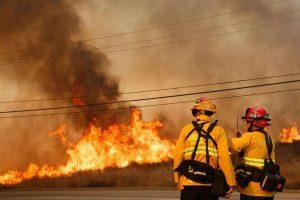 Vigili del fuoco, suicidi in aumento negli Usa: sempre più casi di ansia e depressione