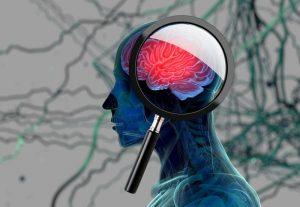 Alzheimer può partire dalle gengive. Ma una molecola può fermare i batteri che lo causano