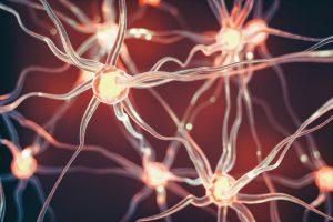Alzheimer: i farmaci non funzionano, la multinazionale alza bandiera bianca. Screening unica soluzione