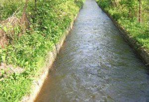 Cuneo, si butta nel canale per salvare il cane ma muore annegata