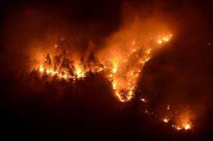 Como, con una grigliata scatenarono un incendio nel bosco: multa di 13 milioni di euro (foto d'archivio Ansa)
